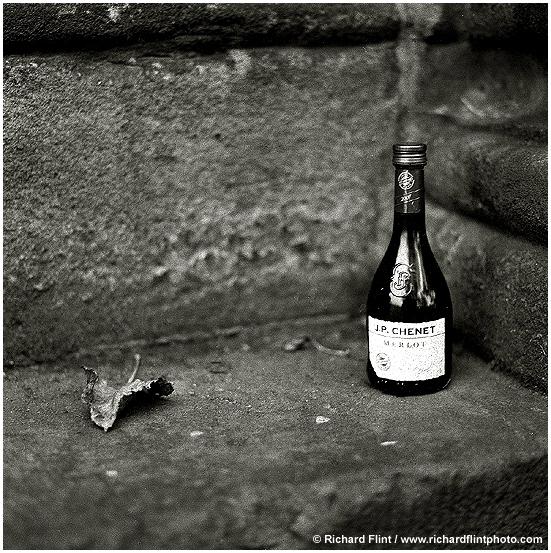 leaf_bottle_6x6